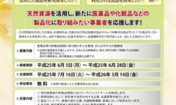 医薬品開発プロジェクトの参加事業者募集チラシ(表)