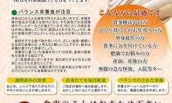 治療食・健康食製造宅配専門店のチラシデザイン(表)