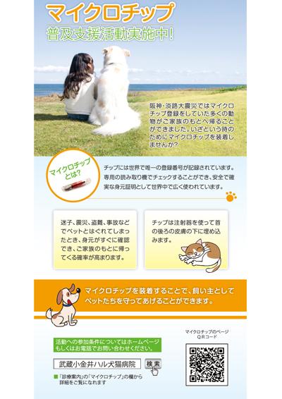 犬猫病院のマイクロチップに関するDM(裏面)
