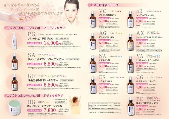 サロン専用化粧品のカタログデザイン(裏)