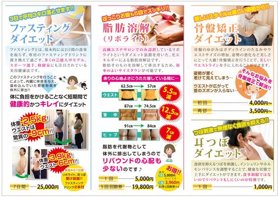 ダイエットメニューのパンフレットデザイン(裏)