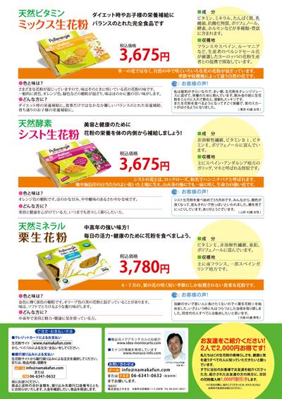 栄養補助食品のチラシデザイン(裏)